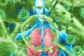 علوم پزشکی استان البرز چه اقداماتی در رابطه با کرونا ویروس انجام داده است؟